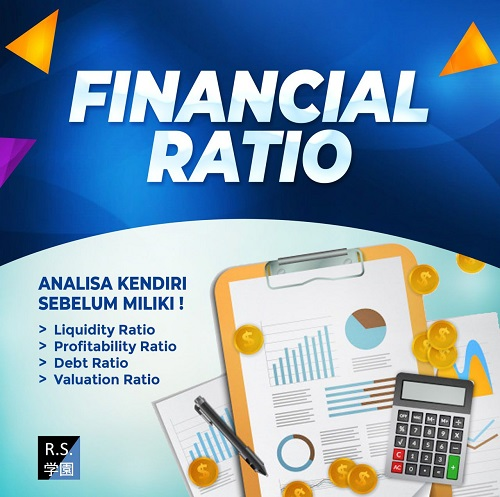 bonus-2-financial-ratio